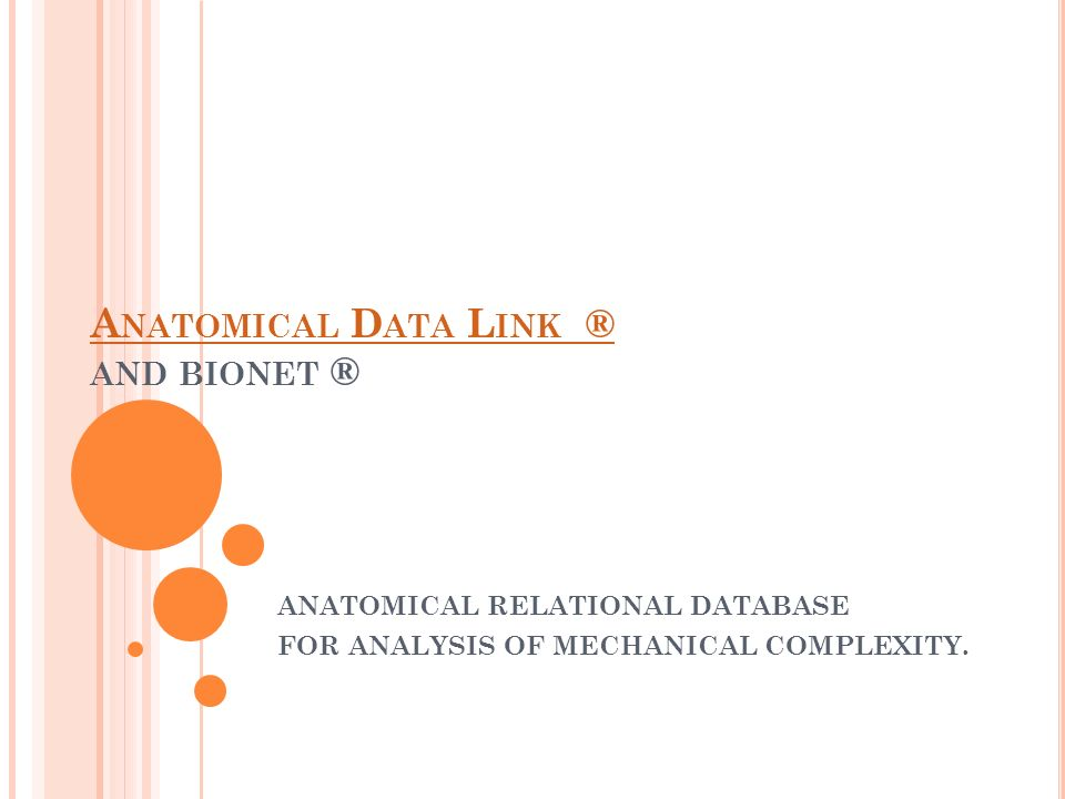 A NATOMICAL D ATA L INK ® A NATOMICAL D ATA L INK ® AND BIONET ® ANATOMICAL RELATIONAL DATABASE FOR ANALYSIS OF MECHANICAL COMPLEXITY.