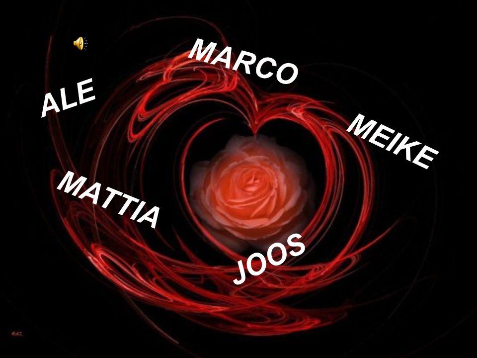 ALE MARCO MATTIA JOOS MEIKE