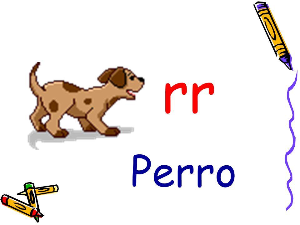 rr Perro