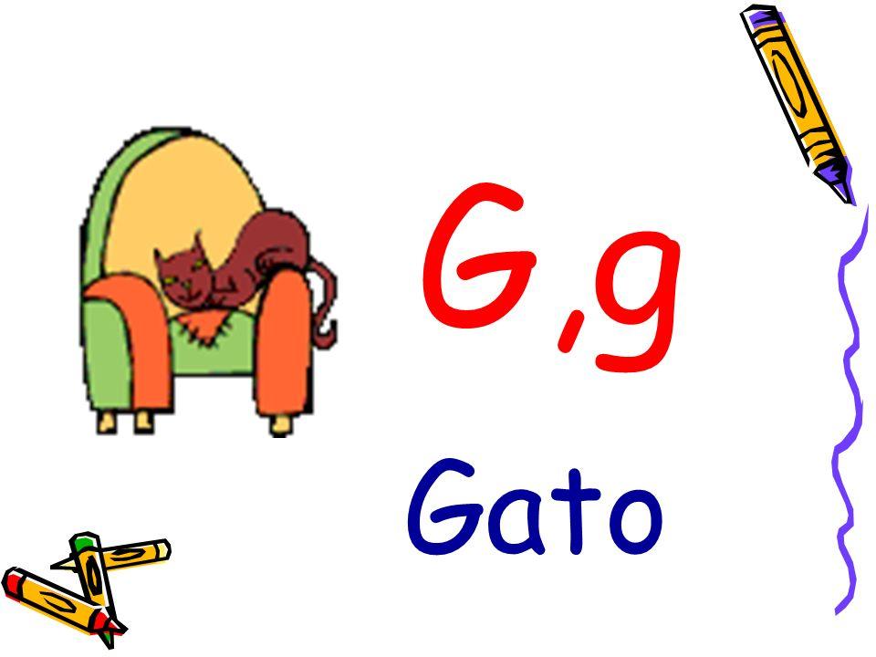 G,g Gato