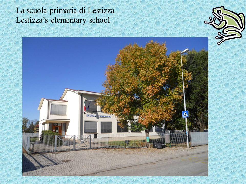 La scuola primaria di Lestizza Lestizzas elementary school