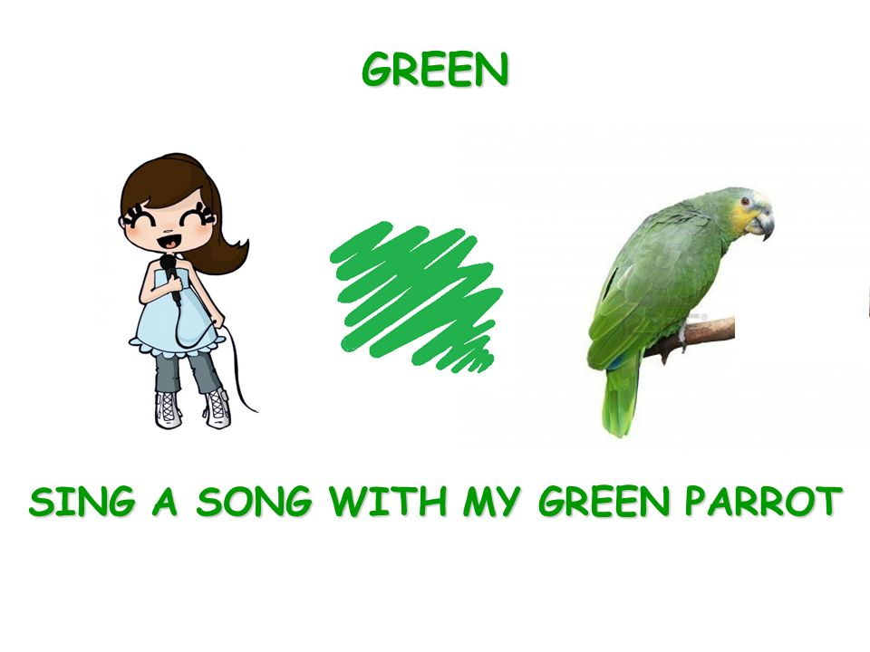 SING A SONG WITH MY GREEN PARROT GREEN