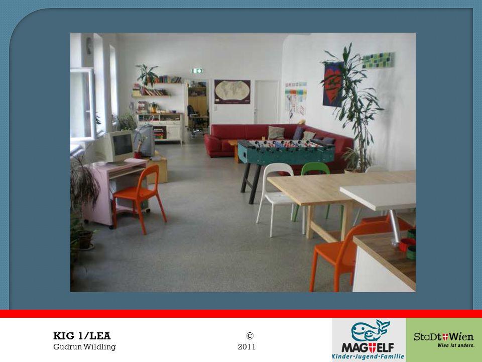Titel des Vortrages Vortragender KIG 1/LEA © Gudrun Wildling 2011