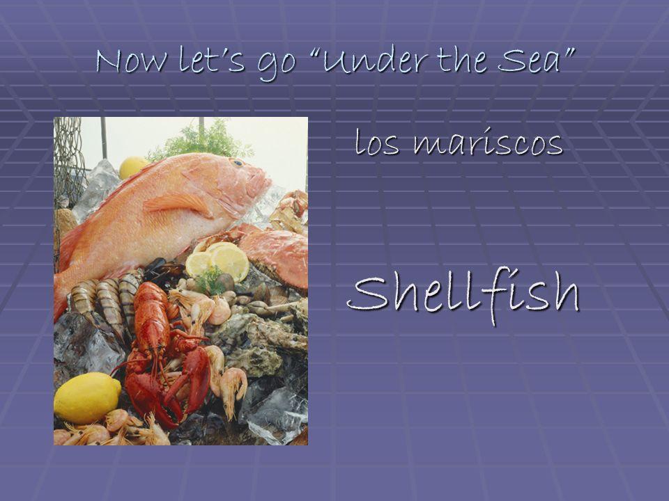 Now lets go Under the Sea los mariscos los mariscosShellfish