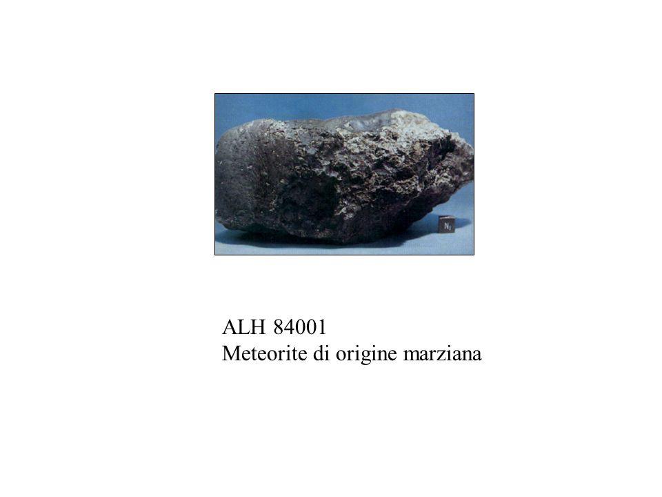 ALH 84001 Meteorite di origine marziana