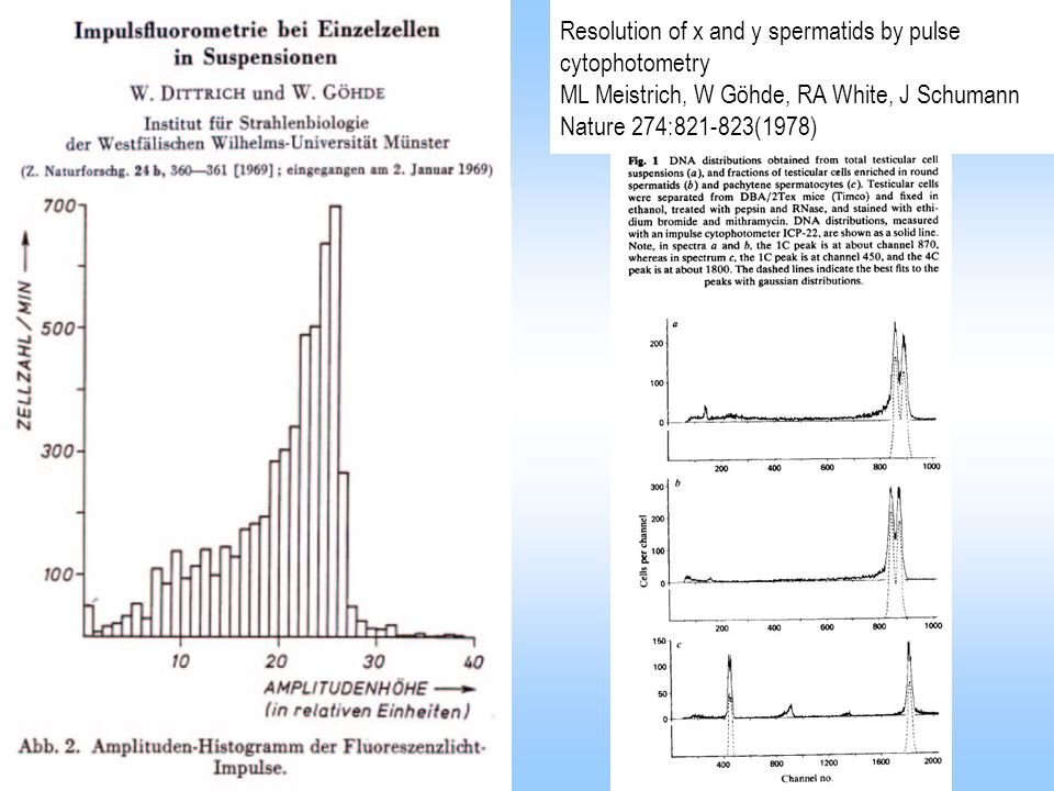 Resolution of x and y spermatids by pulse cytophotometry ML Meistrich, W Göhde, RA White, J Schumann Nature 274:821-823(1978)