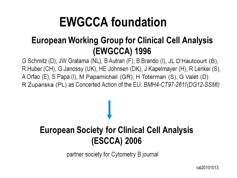 EWGCCA foundation European Working Group for Clinical Cell Analysis (EWGCCA) 1996 G Schmitz (D), JW Gratama (NL), B Autran (F), B Brando (I), JL DHaut