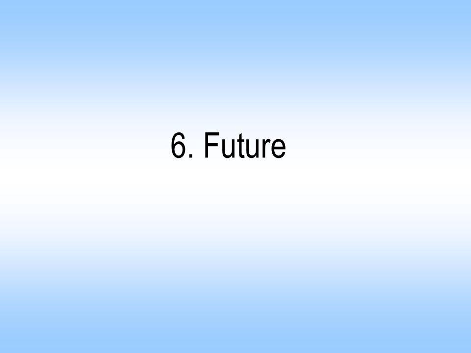 6. Future