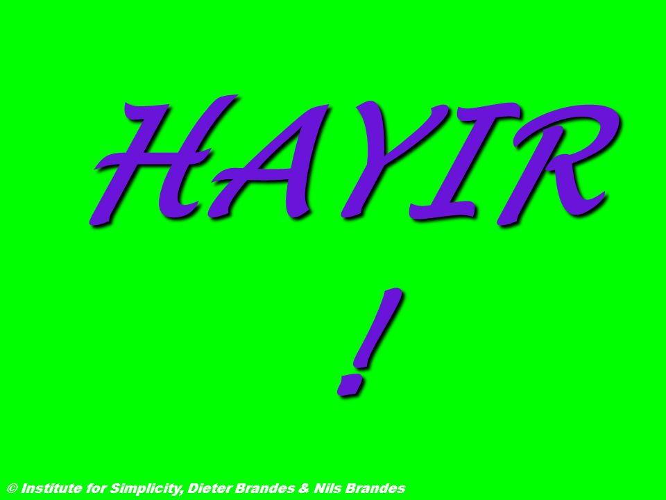 HAYIR ! © Institute for Simplicity, Dieter Brandes & Nils Brandes