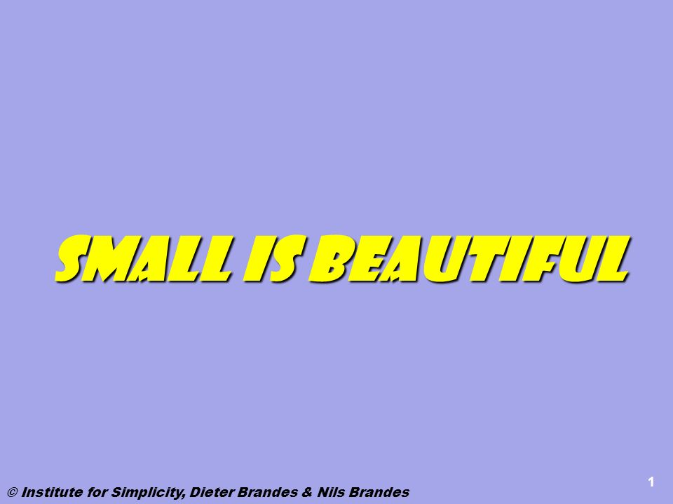 1 Small is beautiful © Institute for Simplicity, Dieter Brandes & Nils Brandes