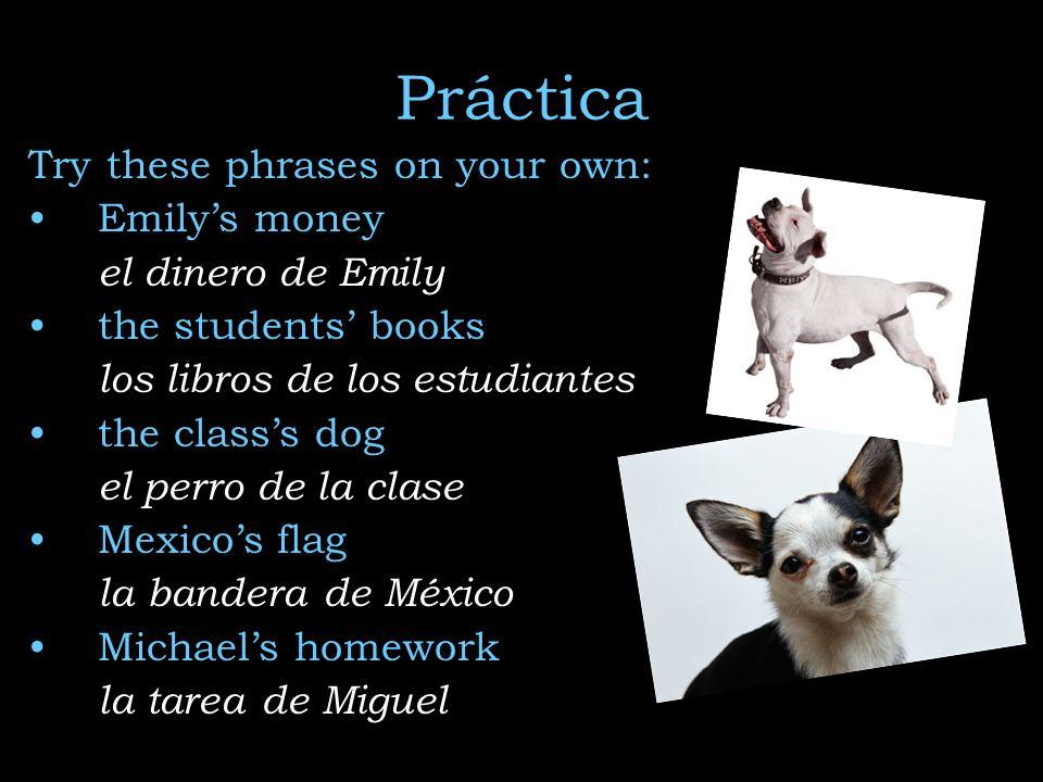 Práctica Try these phrases on your own: Emilys money el dinero de Emily the students books los libros de los estudiantes the classs dog el perro de la