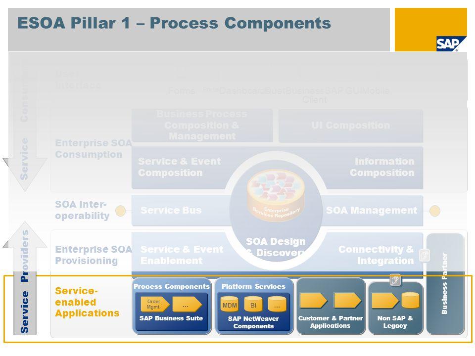 ESOA Pillar 1 – Process Components Process Components SAP Business Suite Order Mgmt.... Platform Services SAP NetWeaver Components Non SAP & Legacy Se