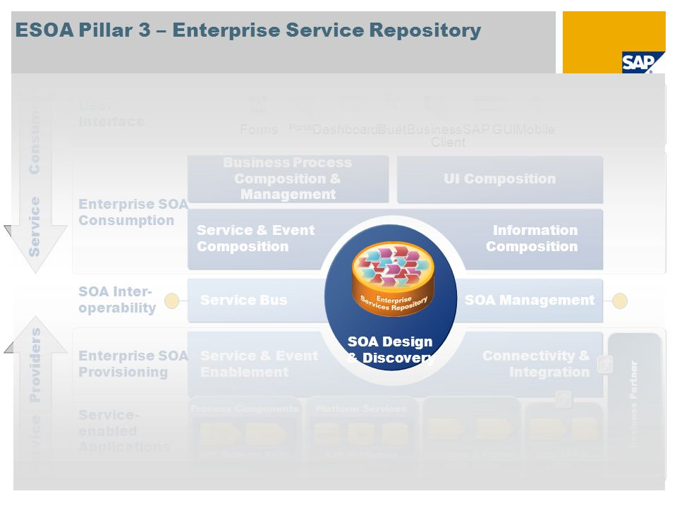 ESOA Pillar 3 – Enterprise Service Repository Process Components SAP Business Suite Order Mgmt.... Platform Services SAP NetWeaver Components Non SAP