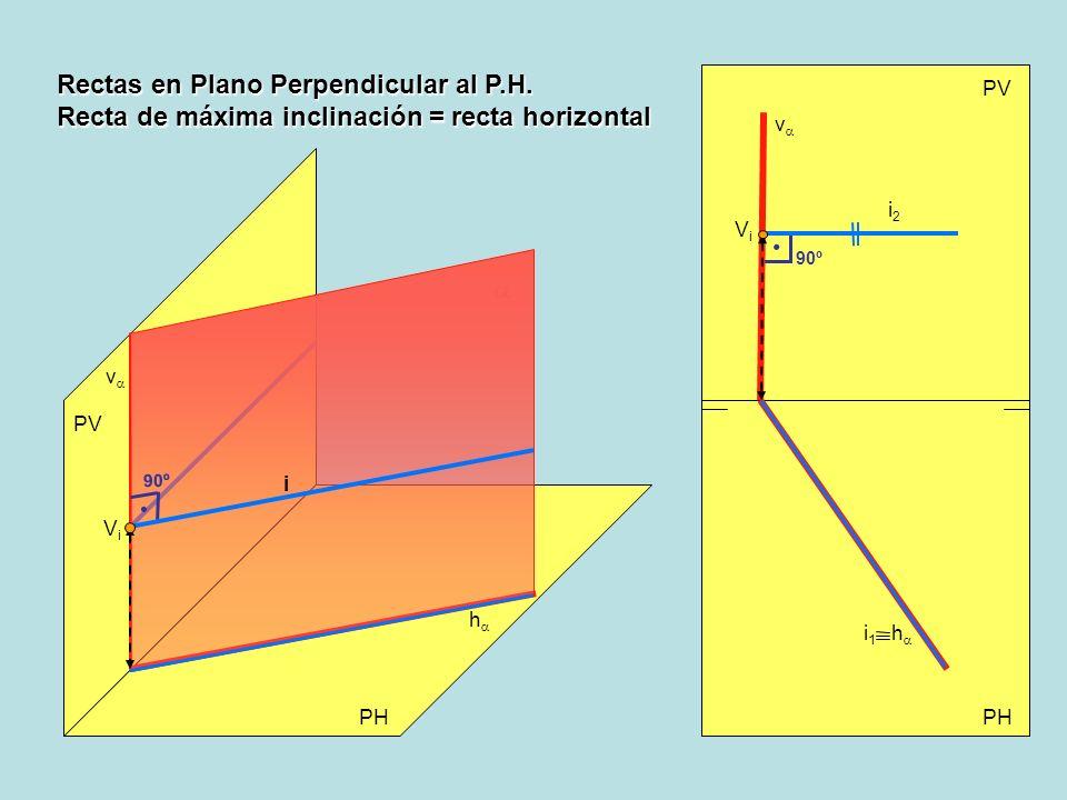 Rectas en Plano Perpendicular al P.H.