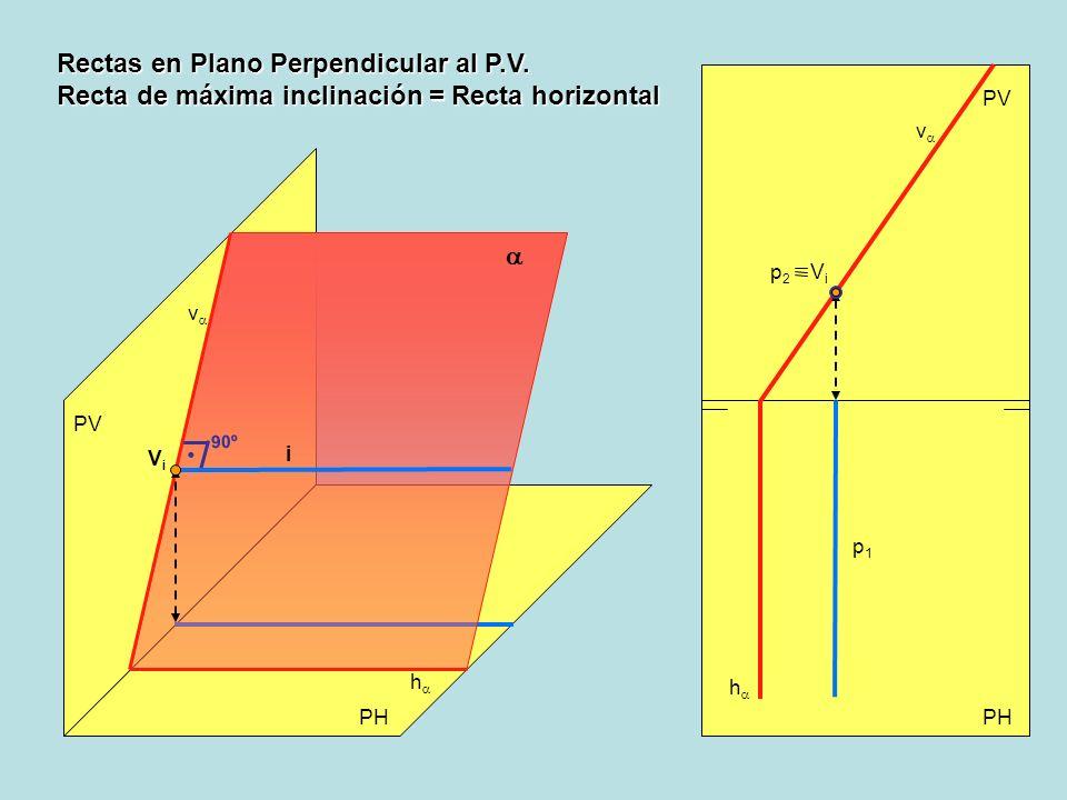 Rectas en Plano Perpendicular al P.V.