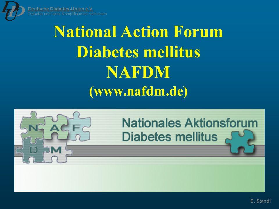Deutsche Diabetes-Union e.V. Diabetes und seine Komplikationen verhindern E. Standl National Action Forum Diabetes mellitus NAFDM (www.nafdm.de)