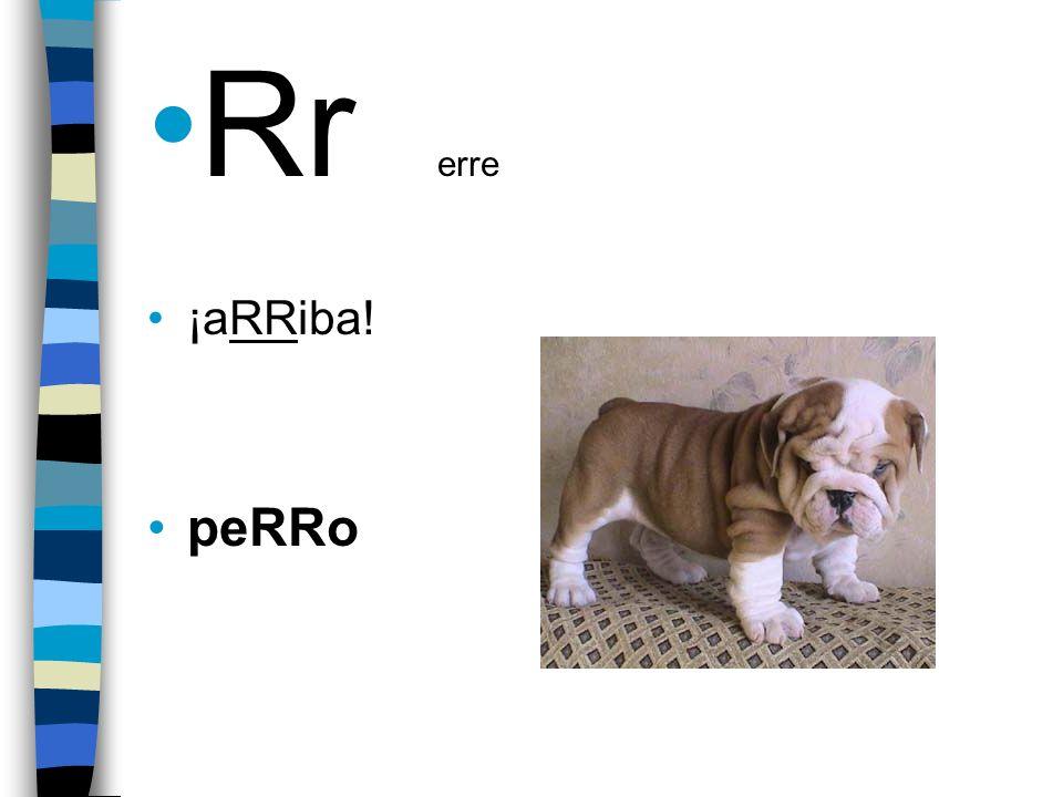 Rr erre ¡aRRiba! peRRo