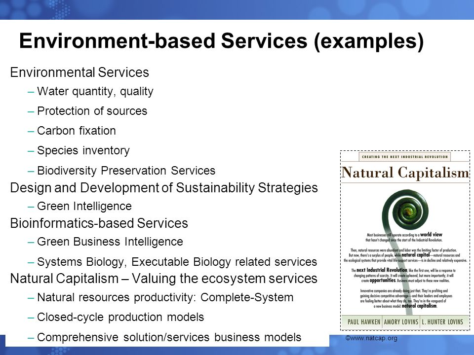 Environment-based Services (examples) Environmental Services –Water quantity, quality –Protection of sources –Carbon fixation –Species inventory –Biod