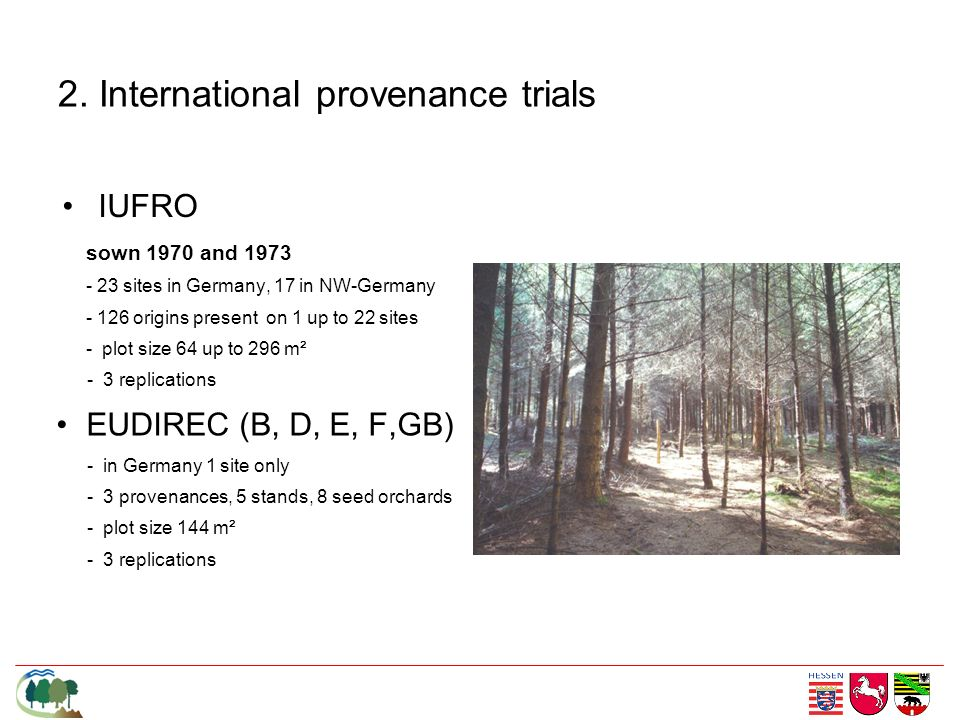 IUFRO sown 1970 and 1973 - 23 sites in Germany, 17 in NW-Germany - 126 origins present on 1 up to 22 sites - plot size 64 up to 296 m² - 3 replication