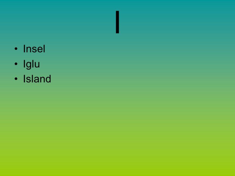 I Insel Iglu Island