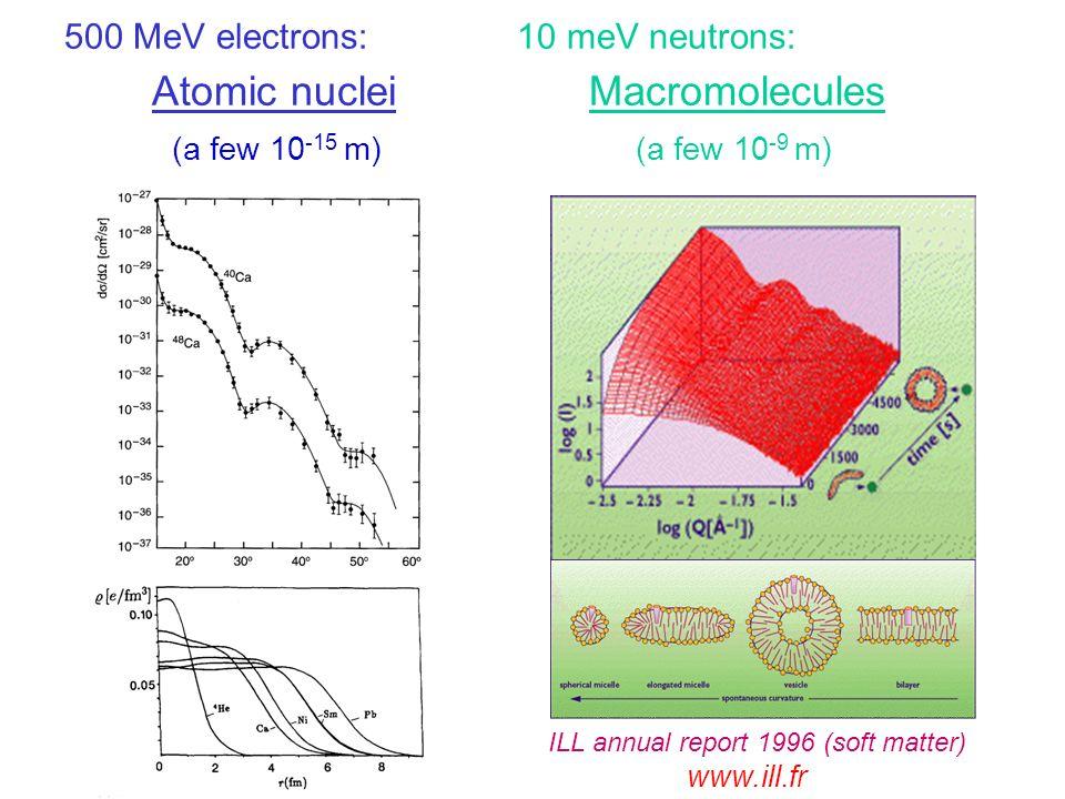 500 MeV electrons: 10 meV neutrons: Atomic nuclei Macromolecules (a few 10 -15 m) (a few 10 -9 m) ILL annual report 1996 (soft matter) www.ill.fr