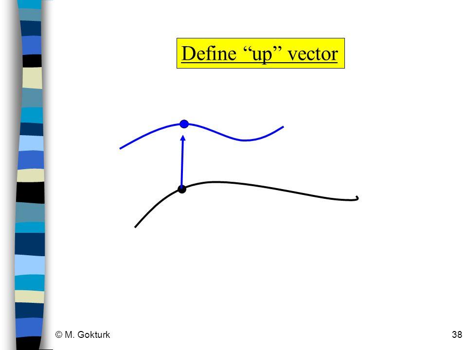 © M. Gokturk38 Define up vector