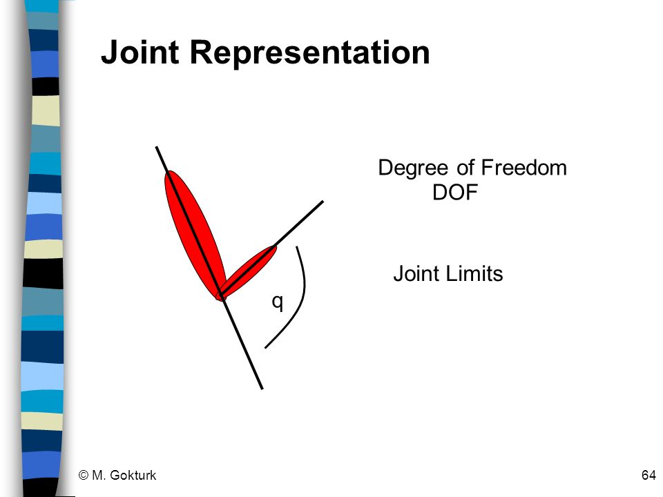 © M. Gokturk64 q Degree of Freedom DOF Joint Limits Joint Representation