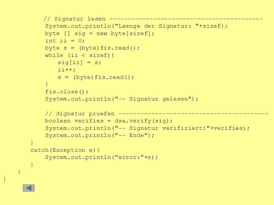 // Signatur lesen ------------------------------------------ System.out.println(