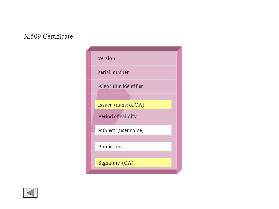X.509 Certificate version serial number Algorithm identifier Issuer (name of CA) Period of validity Subject (user name) Public key Signature (CA)