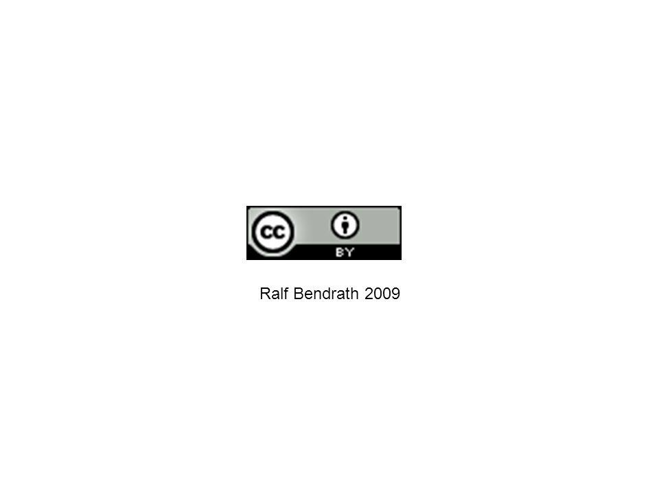 Ralf Bendrath 2009