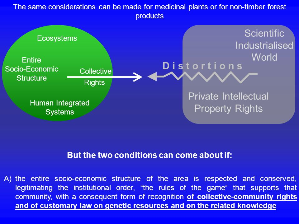 But the two conditions can come about if: A)the entire socio-economic structure of the area is respected and conserved, legitimating the institutional