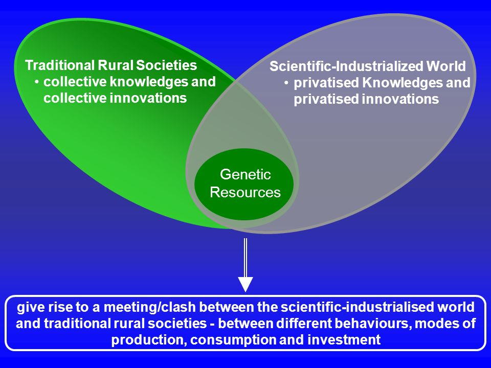 Traditional Rural Societies collective knowledges and collective innovations Genetic Resources Scientific-Industrialized World privatised Knowledges a