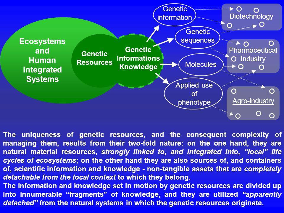 Ecosystems and Human Integrated Systems Genetic Informations Knowledge Genetic Resources Genetic information Genetic sequences Molecules Applied use o