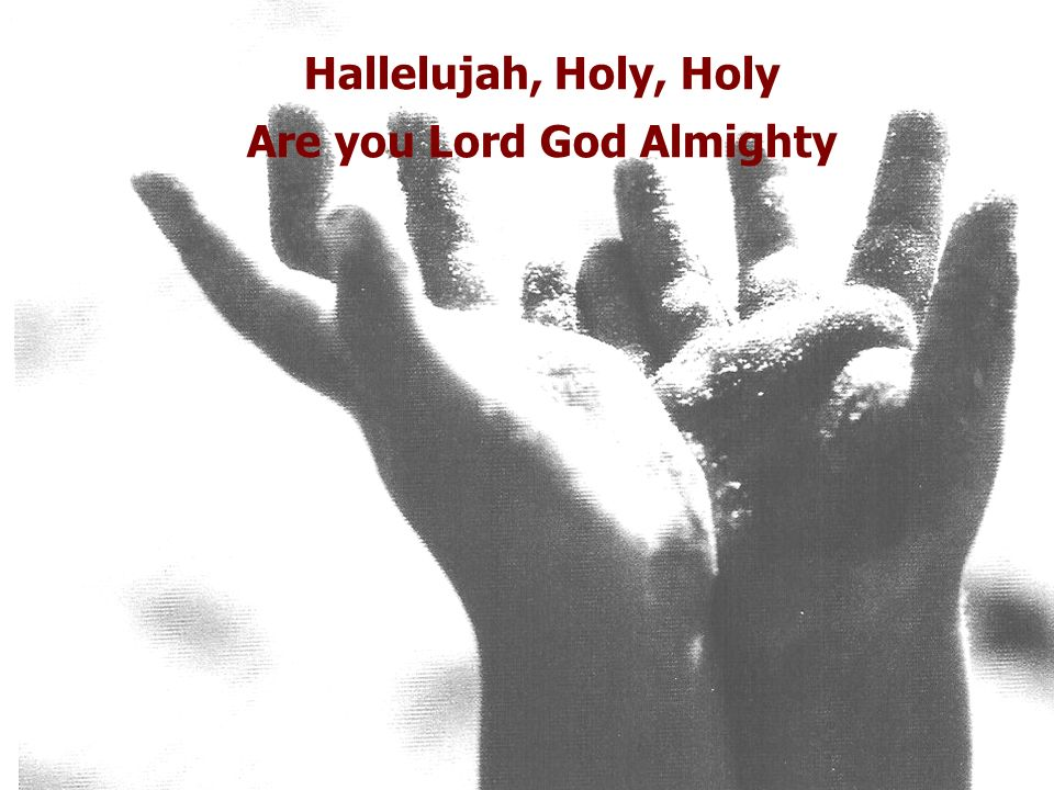 Hallelujah, Holy, Holy Are you Lord God Almighty