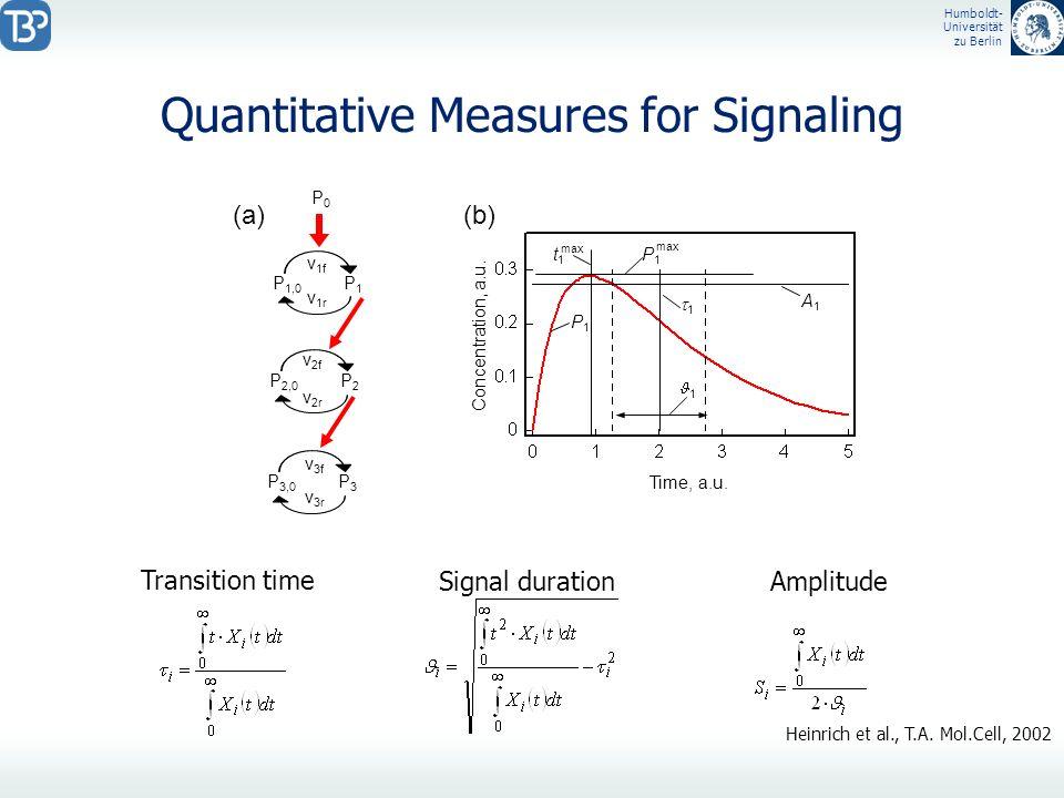 Humboldt- Universität zu Berlin Quantitative Measures for Signaling P 1,0 P1P1 v 1f v 1r P 2,0 P2P2 P 3,0 P3P3 v 2r P0P0 v 2f v 3f v 3r Time, a.u. Con