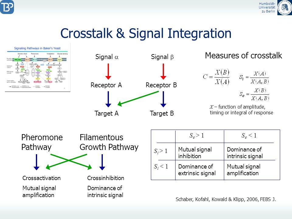 Humboldt- Universität zu Berlin Crosstalk & Signal Integration Schaber, Kofahl, Kowald & Klipp, 2006, FEBS J. Signal Receptor AReceptor B Target ATarg