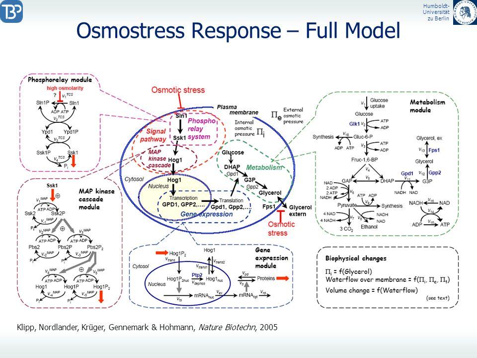 Humboldt- Universität zu Berlin Osmostress Response – Full Model Klipp, Nordlander, Krüger, Gennemark & Hohmann, Nature Biotechn, 2005
