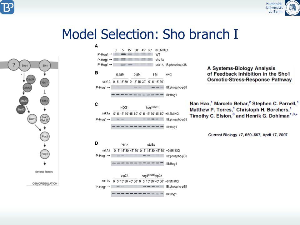 Humboldt- Universität zu Berlin Model Selection: Sho branch I