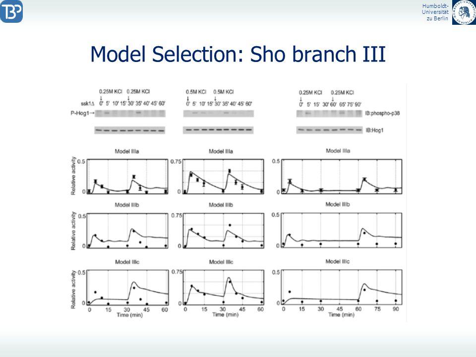 Humboldt- Universität zu Berlin Model Selection: Sho branch III