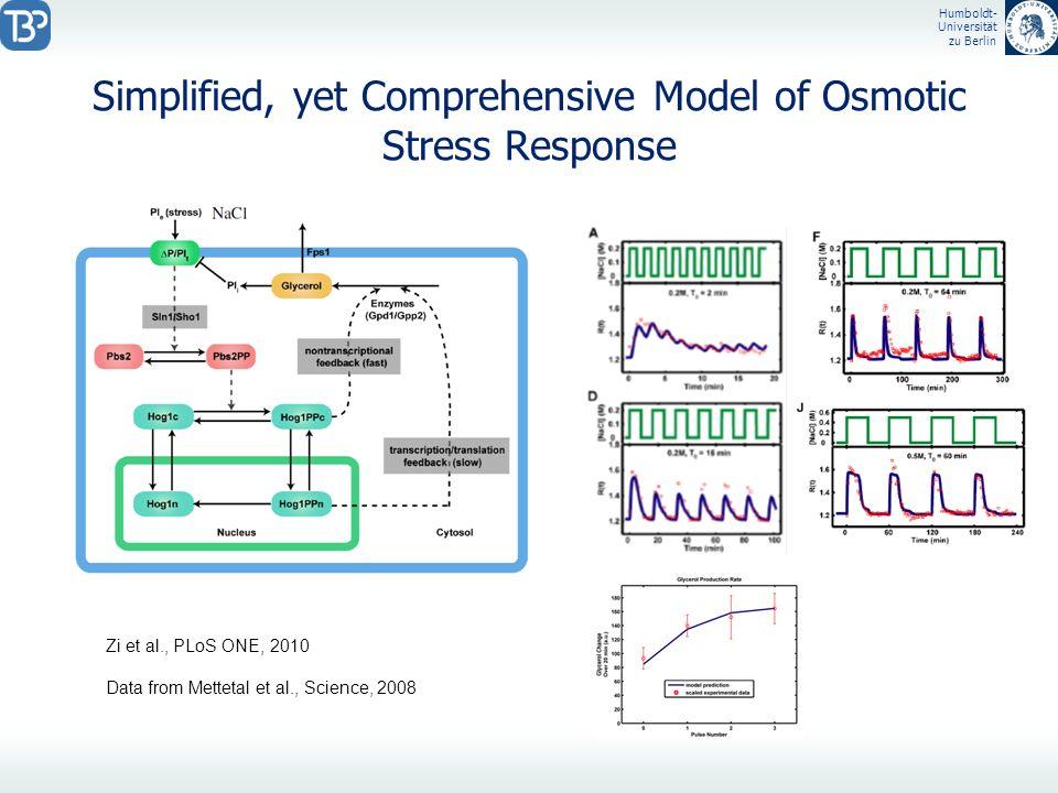 Humboldt- Universität zu Berlin Simplified, yet Comprehensive Model of Osmotic Stress Response Zi et al., PLoS ONE, 2010 Data from Mettetal et al., Sc