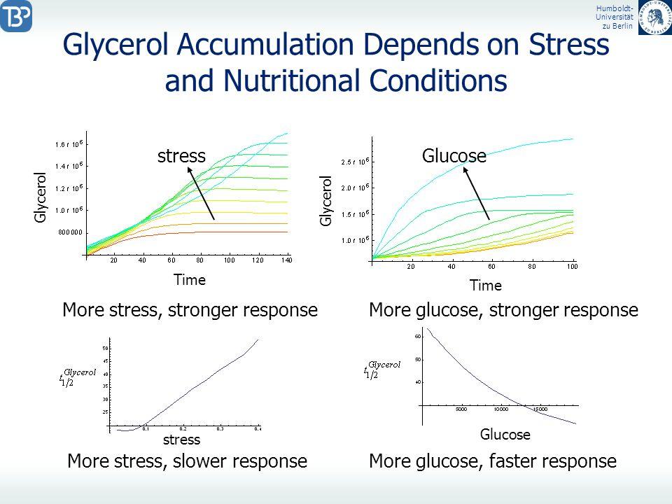 Humboldt- Universität zu Berlin Glycerol Accumulation Depends on Stress and Nutritional Conditions Glycerol Time stressGlucose stress Glucose More str