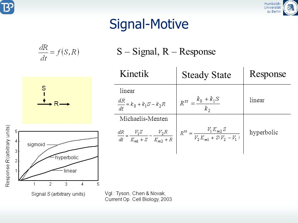 Humboldt- Universität zu Berlin Signal-Motive S – Signal, R – Response S R Kinetik linear Michaelis-Menten Steady State Response linear hyperbolic Sig