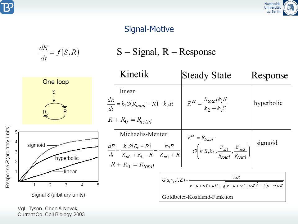 Humboldt- Universität zu Berlin Signal-Motive S – Signal, R – Response Kinetik linear Michaelis-Menten Steady StateResponse hyperbolic Signal S (arbit