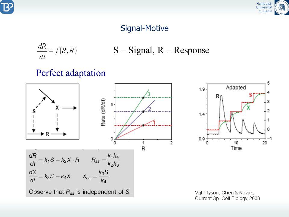 Humboldt- Universität zu Berlin Signal-Motive S – Signal, R – Response Perfect adaptation Vgl.: Tyson, Chen & Novak, Current Op. Cell Biology, 2003