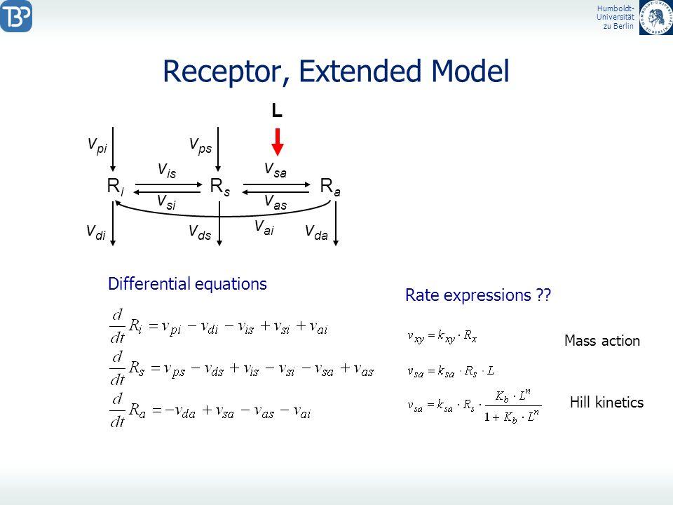 Humboldt- Universität zu Berlin Receptor, Extended Model RiRi RsRs RaRa L visvis vsivsi vsavsa vasvas vpivpi v di v ai vpsvps v ds v da Differential e