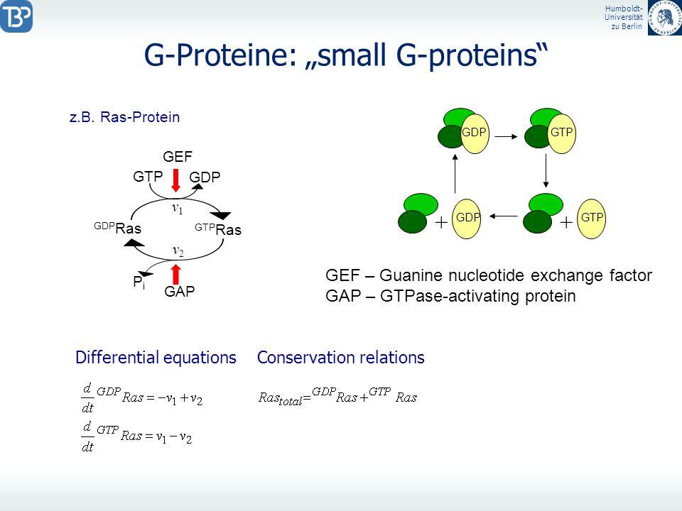 Humboldt- Universität zu Berlin G-Proteine: small G-proteins Differential equationsConservation relations GDPGTP GDP ++ z.B. Ras-Protein GDP Ras GTP R