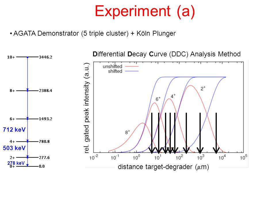 Experiment (a) AGATA Demonstrator (5 triple cluster) + Köln Plunger 712 keV 503 keV 278 keV Differential Decay Curve (DDC) Analysis Method distance ta