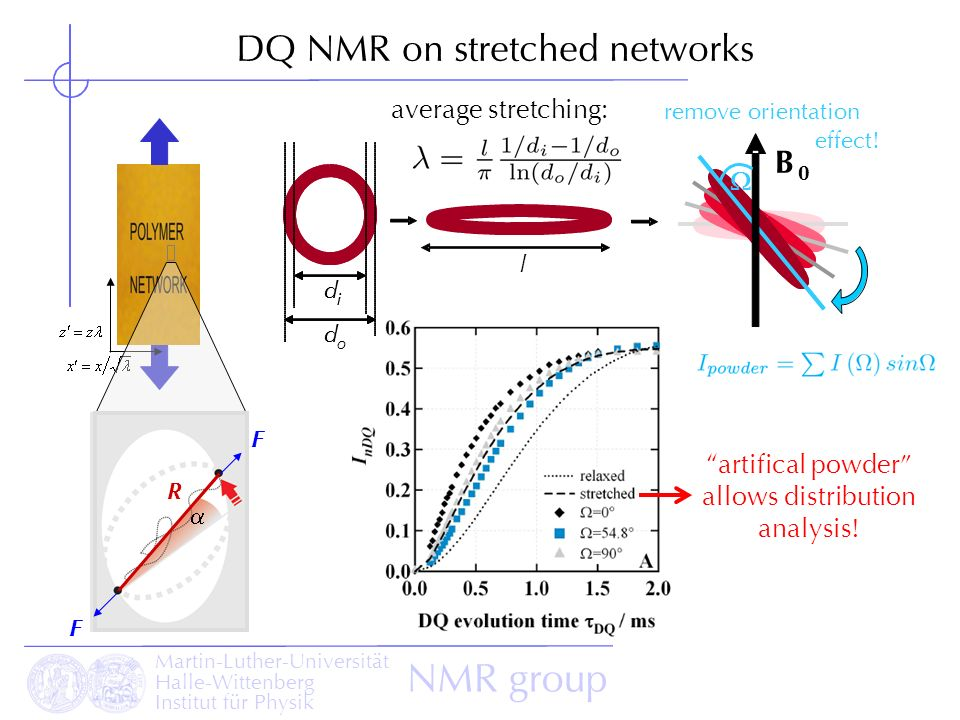Martin-Luther-Universität Halle-Wittenberg Institut für Physik NMR group DQ NMR on stretched networks R F F d i d o d i d l average stretching: B 0 re