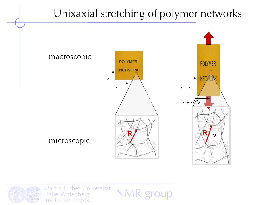 Martin-Luther-Universität Halle-Wittenberg Institut für Physik NMR group x z macroscopic microscopic ? R R Unixaxial stretching of polymer networks