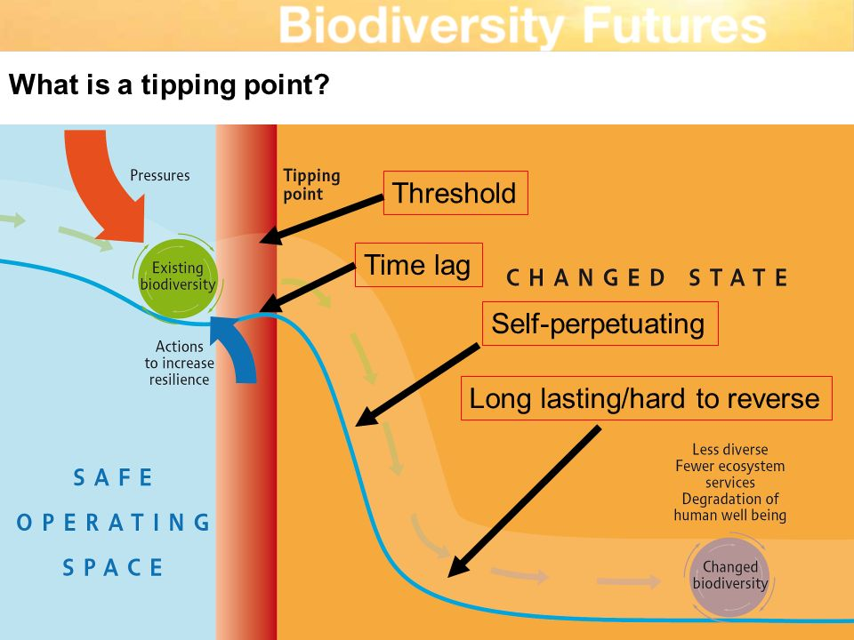 What is a tipping point? Self-perpetuating Threshold Long lasting/hard to reverse Time lag